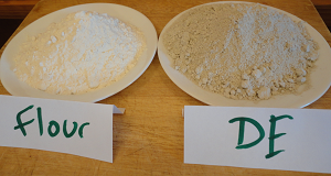 diatomaceous earth and flour