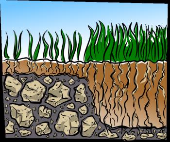 lawn care soil depth